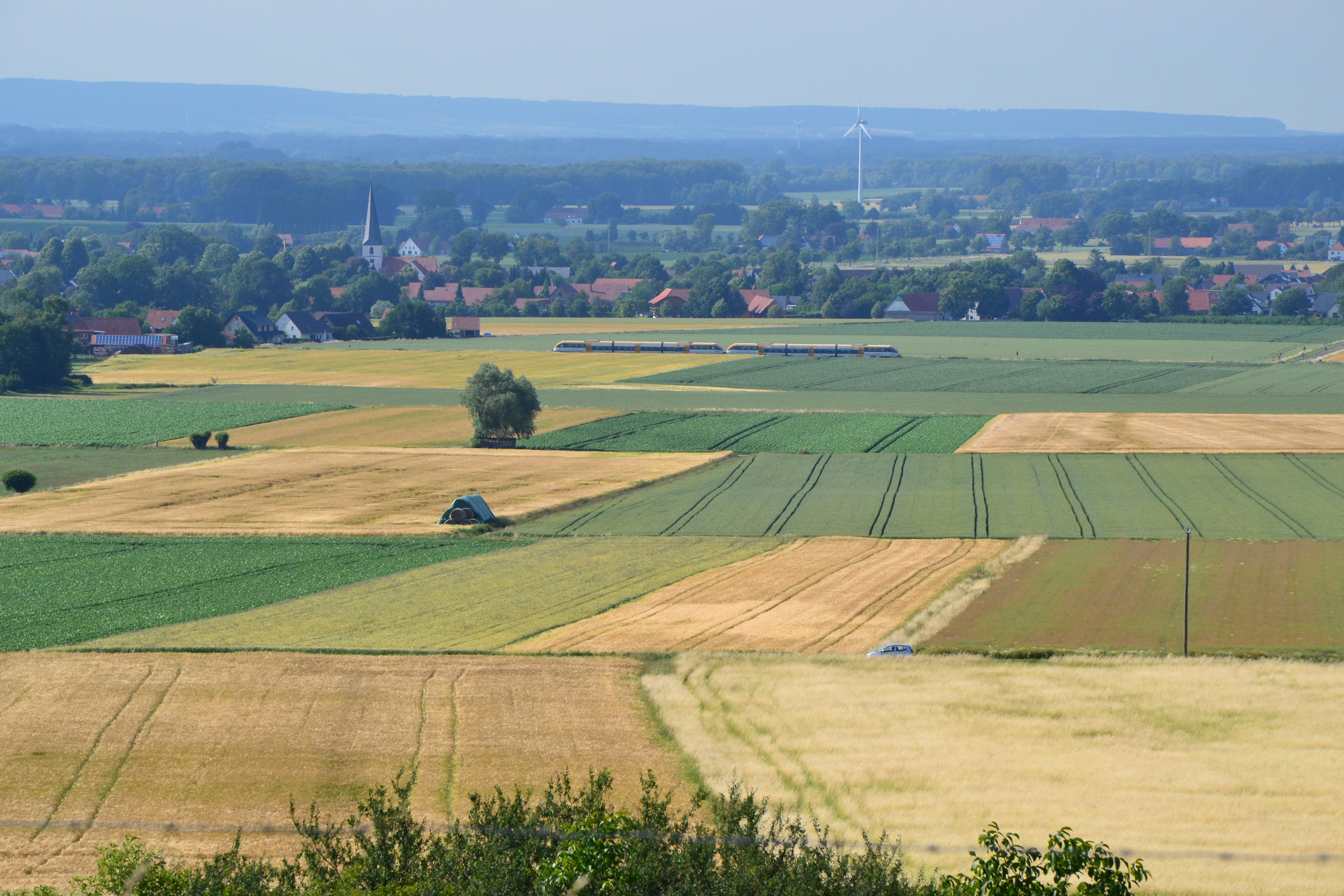 Oberhalb von Blasheim, Blick in Richtung Stemweder Berg.